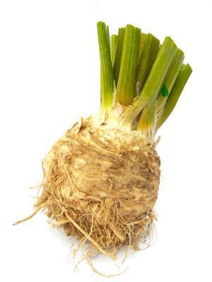 Как вырастить корневой сельдерей - расскажем всем!