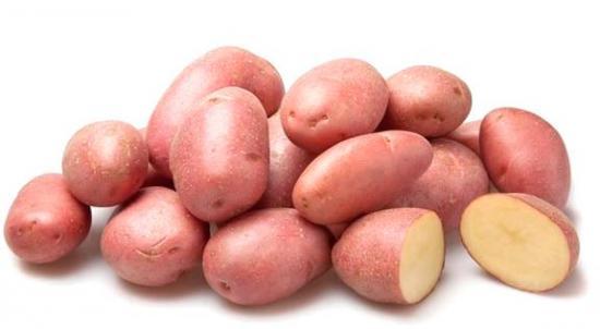 Все что нужно знать о картофеле сорта Розара