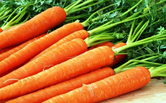 Морковь домашняя
