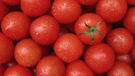 Голландские помидоры