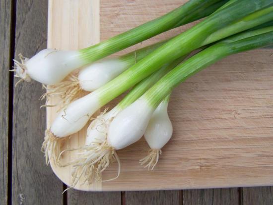 Как вырастить дома зеленый лук зимой